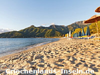 Golden Beach © nneirda | 123RF.com